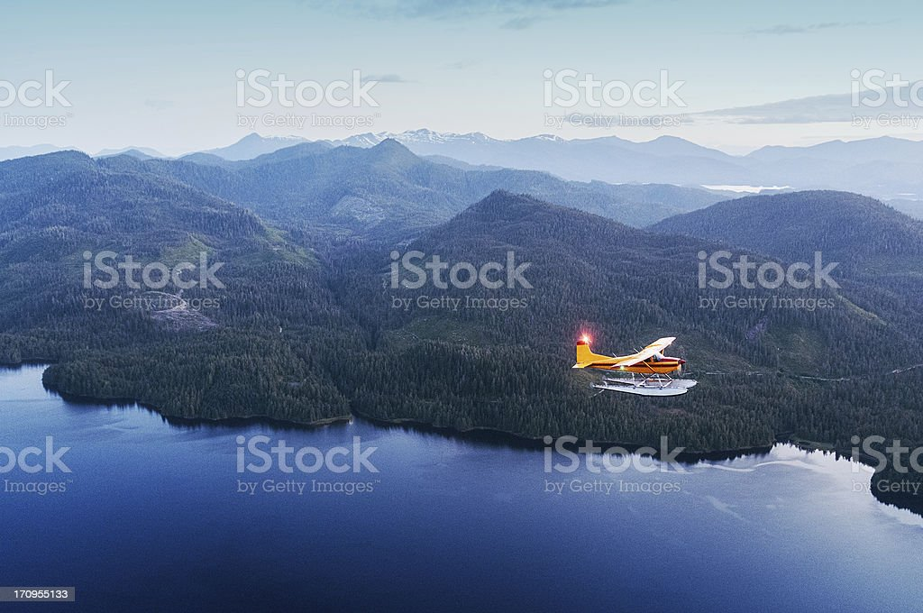Twilight Flight stock photo