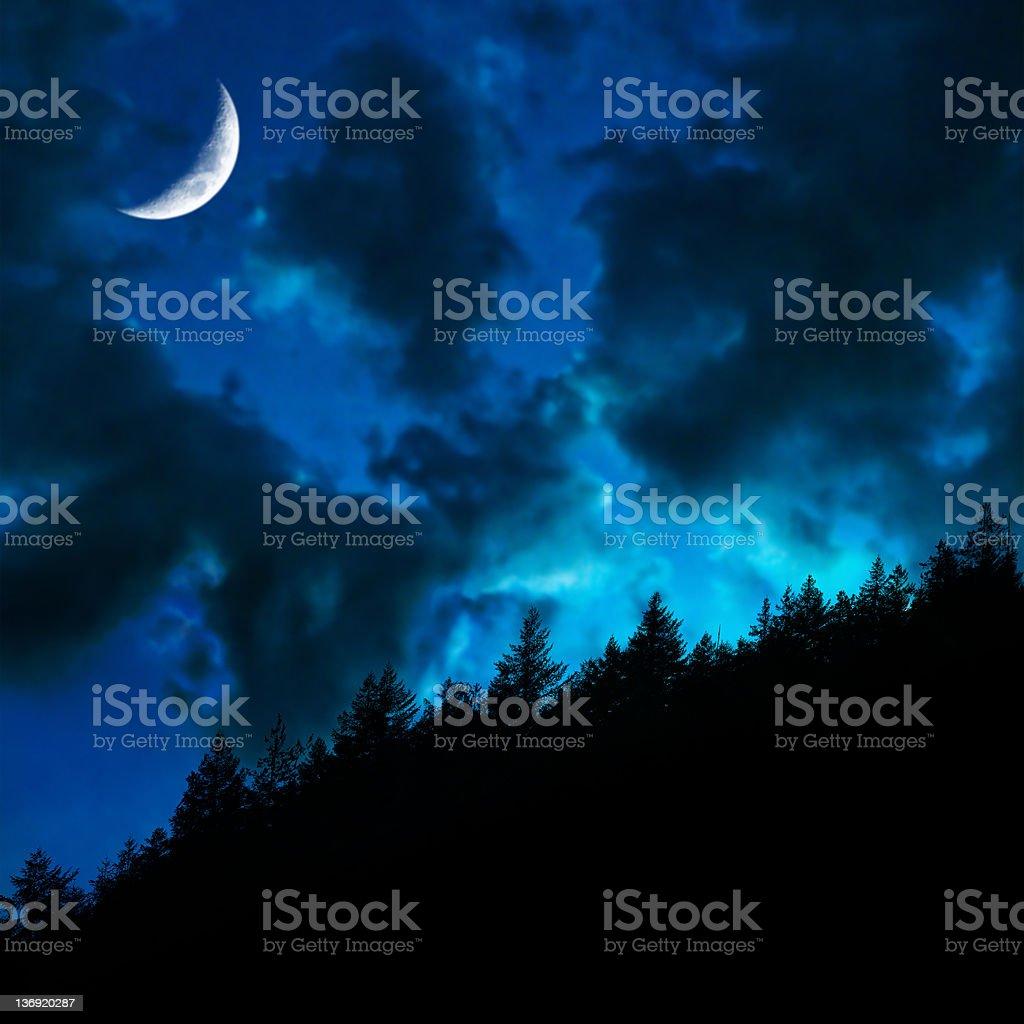 XL twilight forest moon stock photo