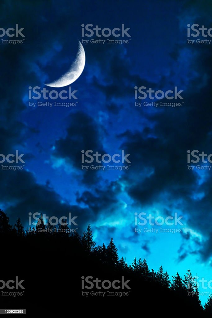 XL twilight forest moon stock photo