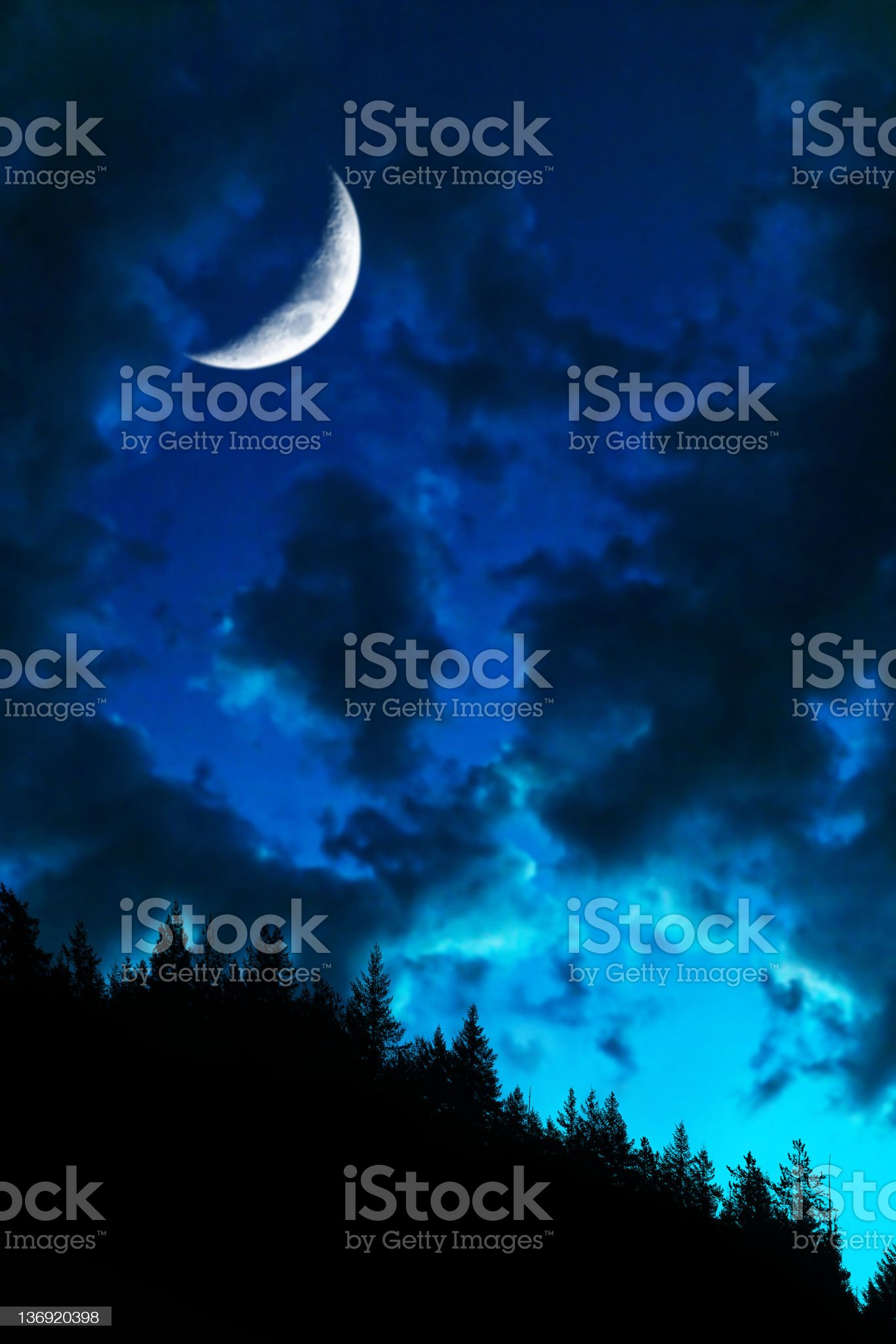 XL twilight forest moon royalty-free stock photo
