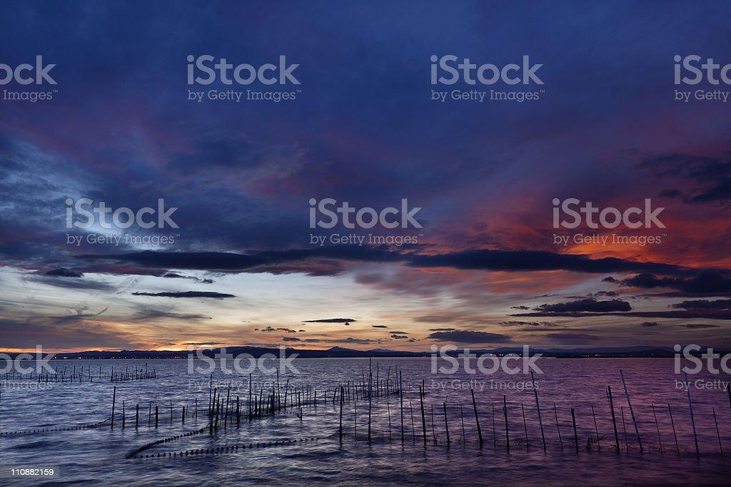 Twilight in La Albufera (Valencia,Spain) stock photo