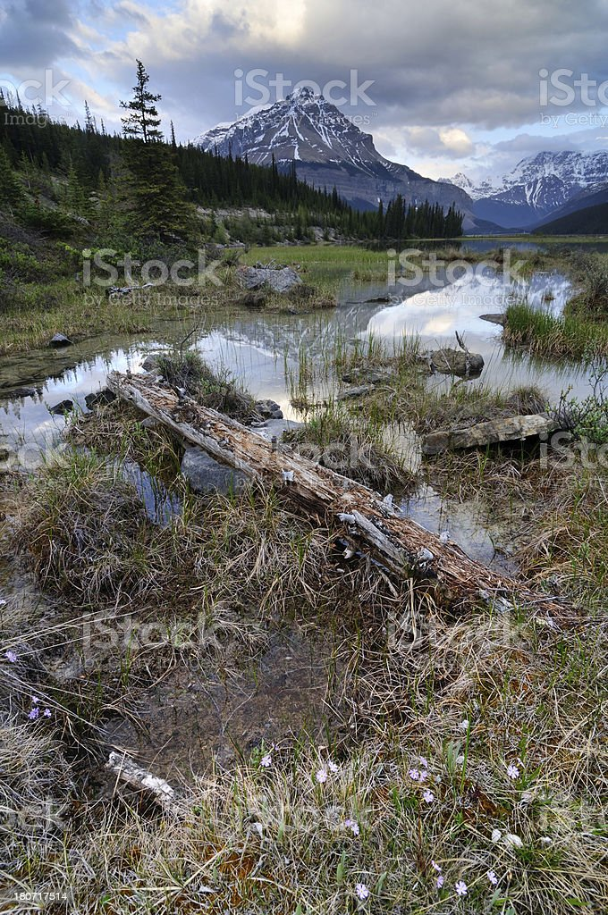 Twilight mountain landscape with reflection in lake at Canadian Rokies stock photo