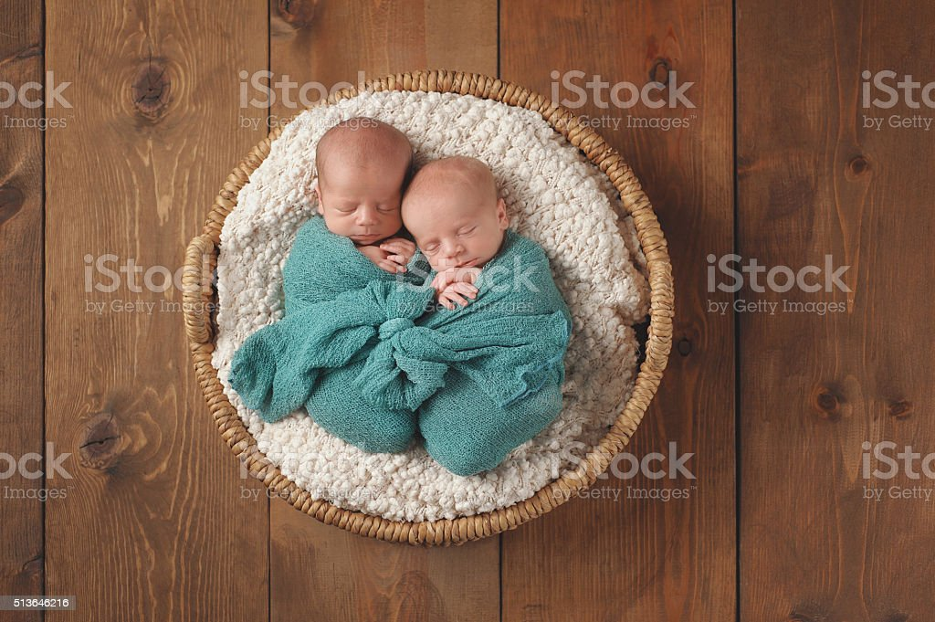Twin Baby Boys Sleeping in a Basket stock photo