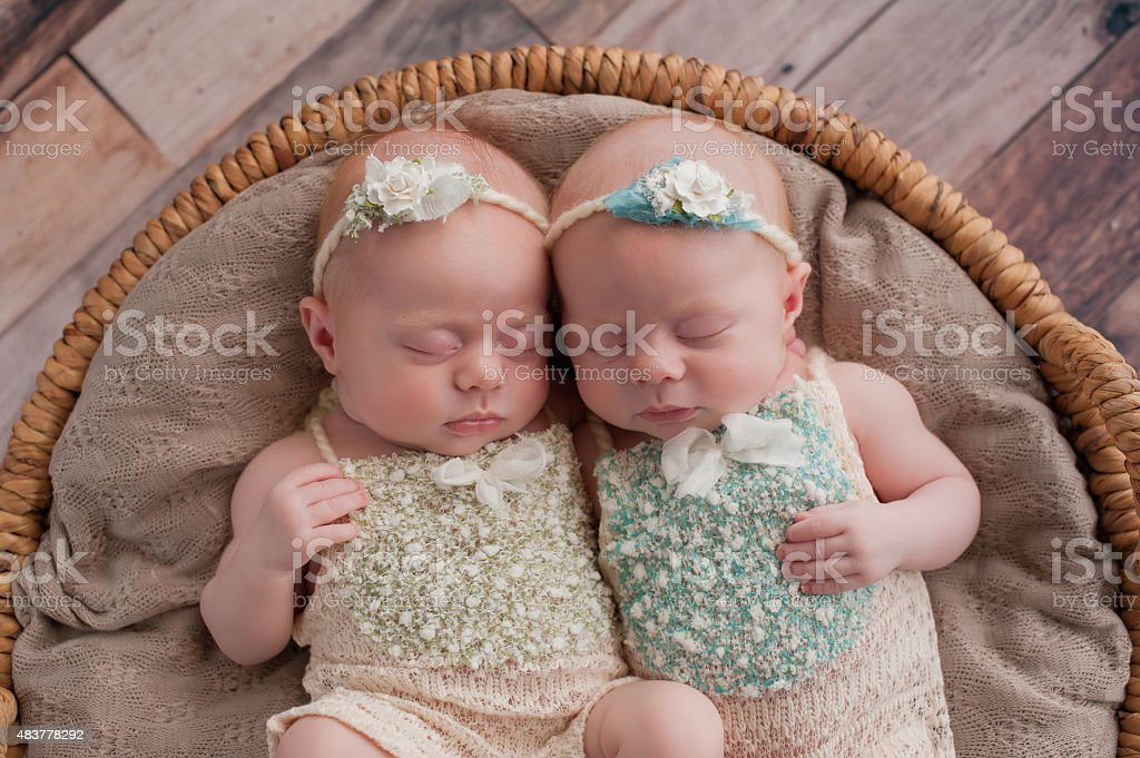 Twin Baby Girls Sleeping in a Wicker Basket stock photo