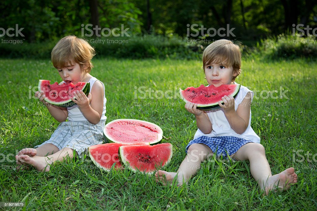 Twin Brothers Eating Watermelon on Green Grass in Summer Park stock photo