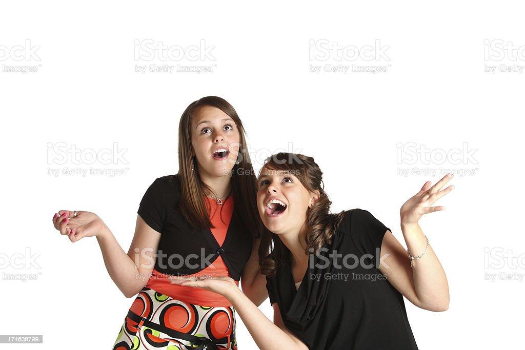 Twin Girls Having Fun royalty-free stock photo