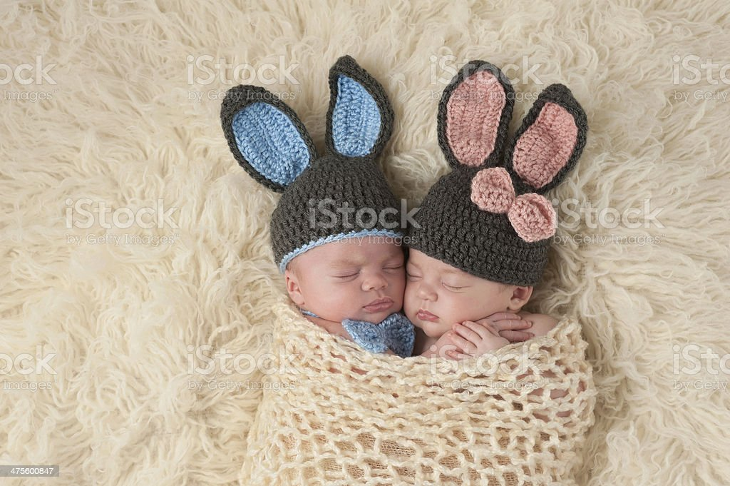 Twin Newborn Babies in Bunny Rabbit Costumes stock photo