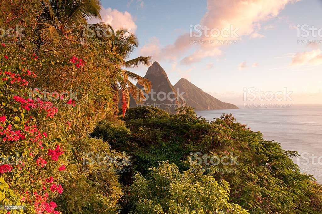 Twin Pitons lit by golden sunset glow stock photo