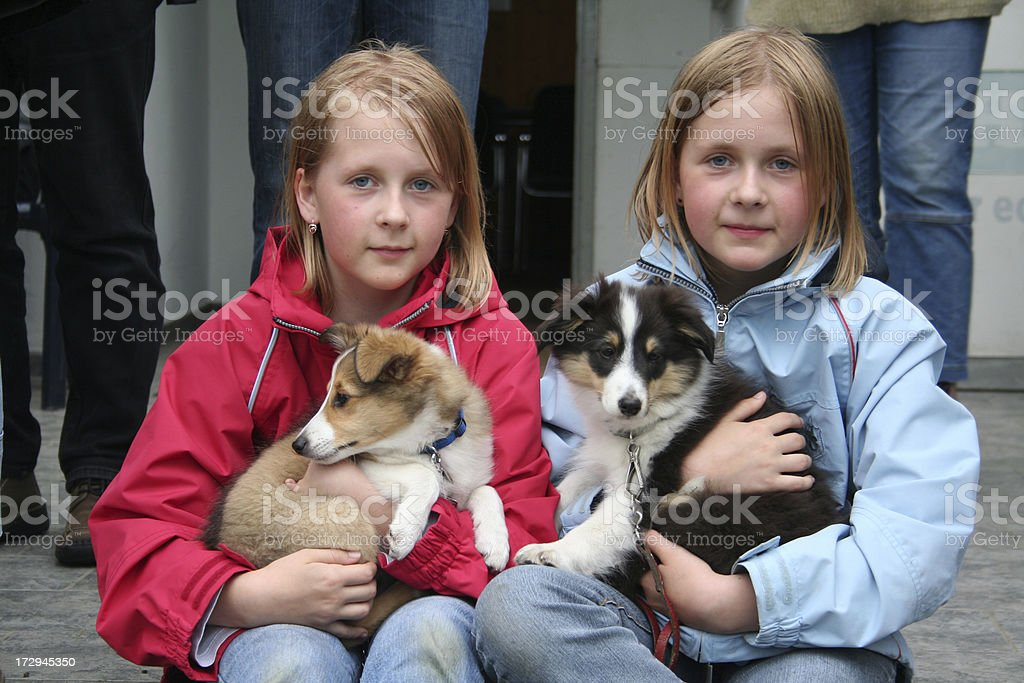 Twin sisters and puppies. stock photo