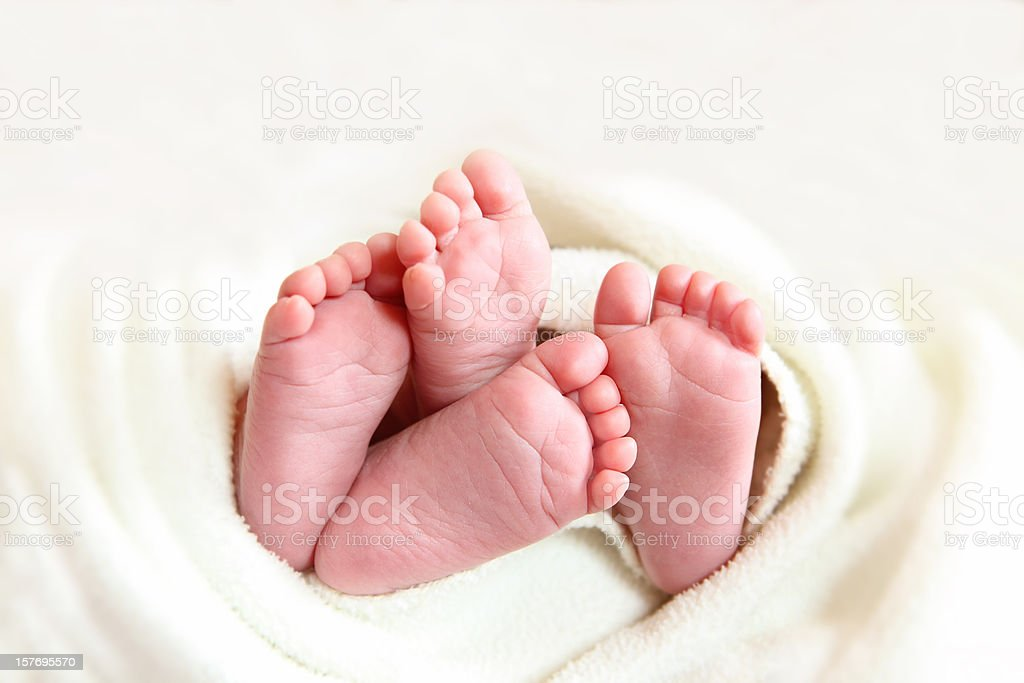 Twins baby feet wraped in a white blanket stock photo