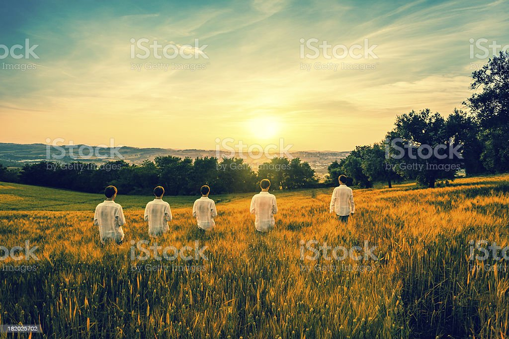 Twins in Wheat Field royalty-free stock photo