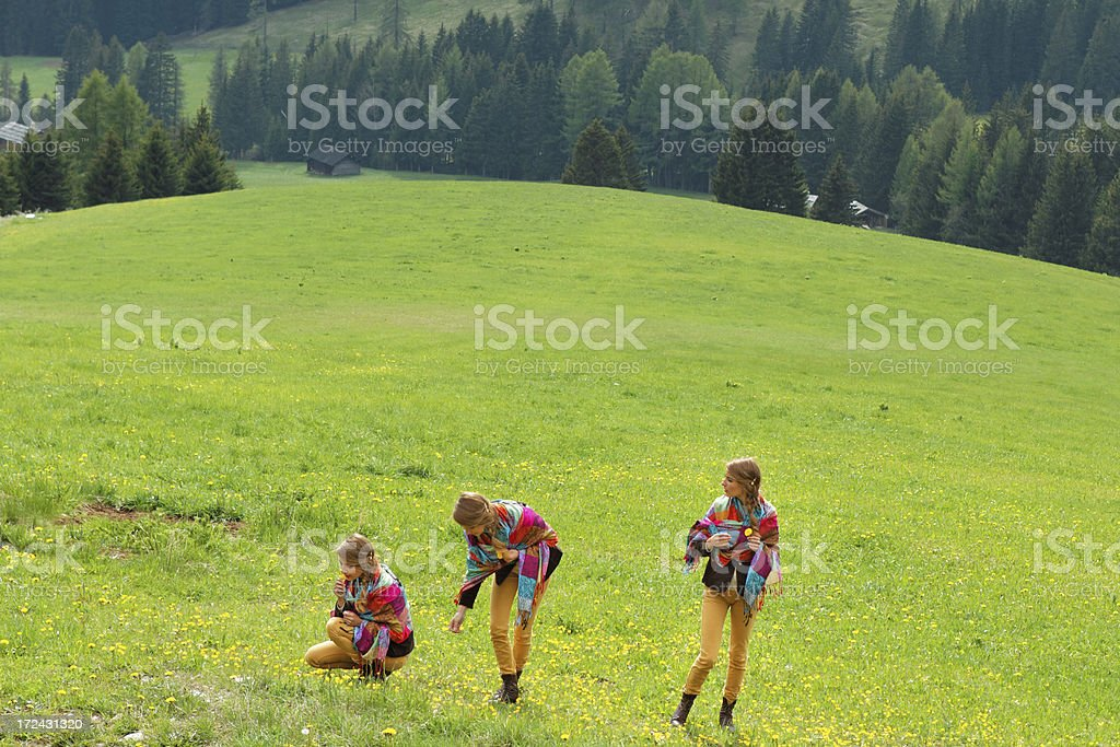 twins picking flowers royalty-free stock photo