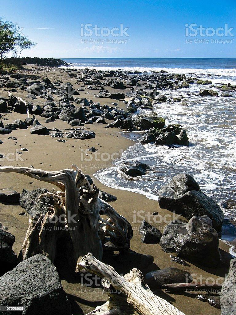 Twisted Beach stock photo