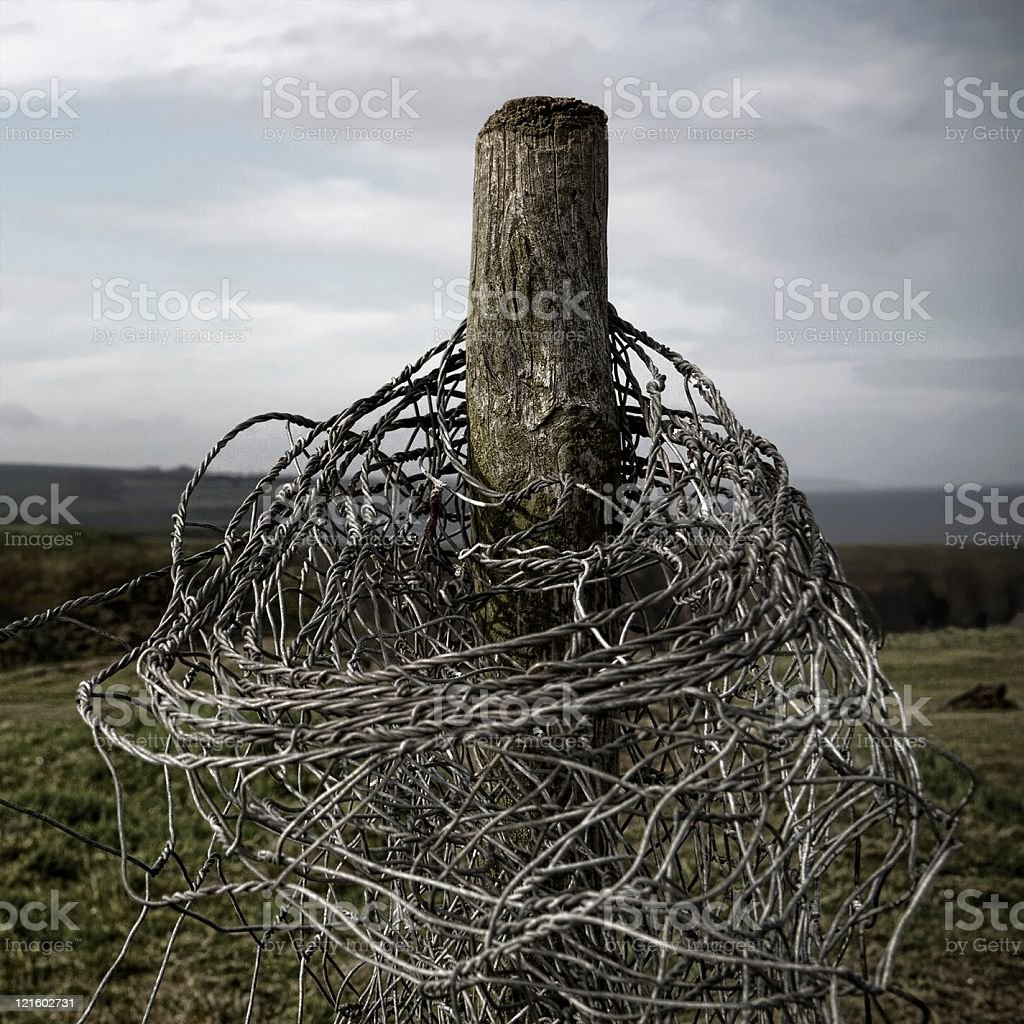 Twisted royalty-free stock photo