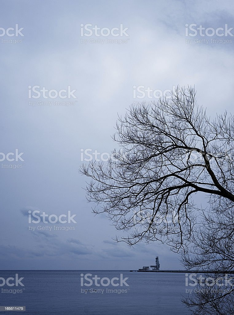 Twlight Tree, Lakefront, Oil Refinery in Distance stock photo