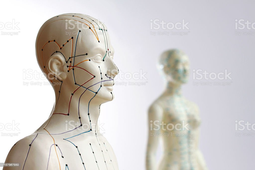 Two acupuncture models - Focus on male stock photo