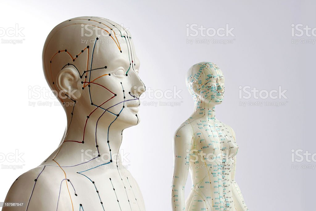 Two acupuncture models - male and female stock photo
