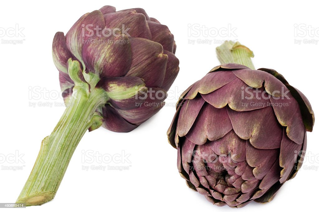 Two artichokes stock photo