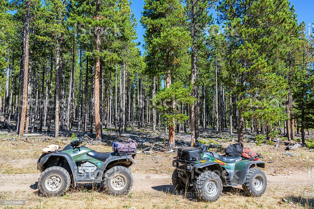 Two ATVs in a Forest stock photo