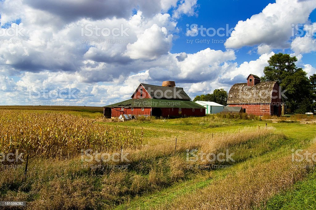 Two Barns royalty-free stock photo