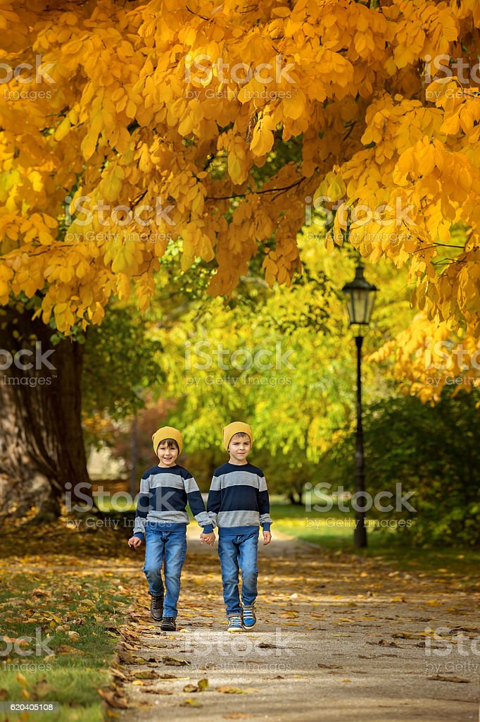 Two beautiful children, boy brothers, walking on a path stock photo