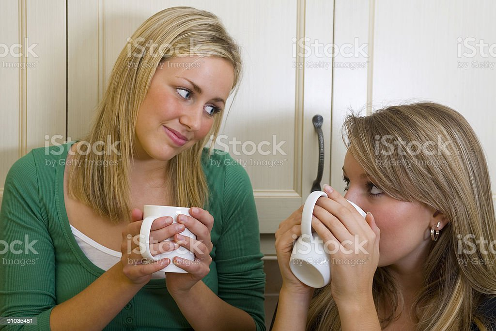 Two Beautiful Young Women Friends Chatting Over Coffee or Tea royalty-free stock photo