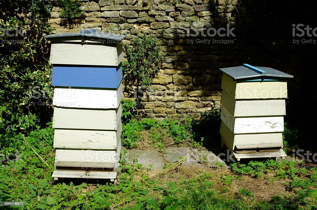 Two beehives in English country garden stock photo