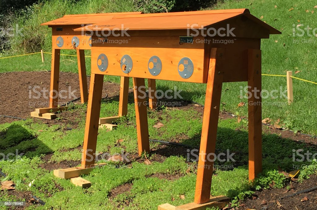 Two Beehives stock photo