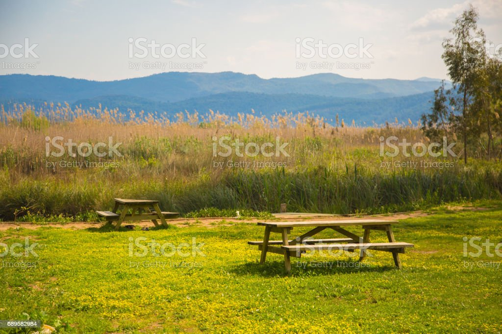 Two benches on the farm stock photo