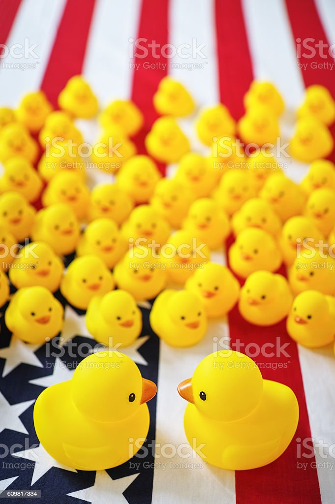 Two big rubber ducks facing off on a USA flag. stock photo