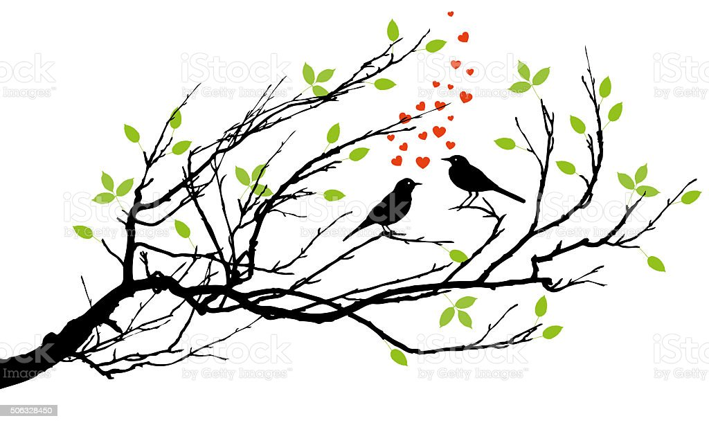 two birds in love stock photo