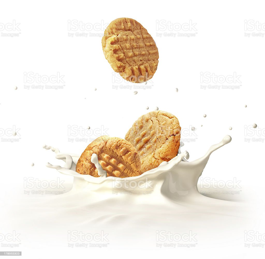 Two biscuits falling into milk splashing. At white background. stock photo