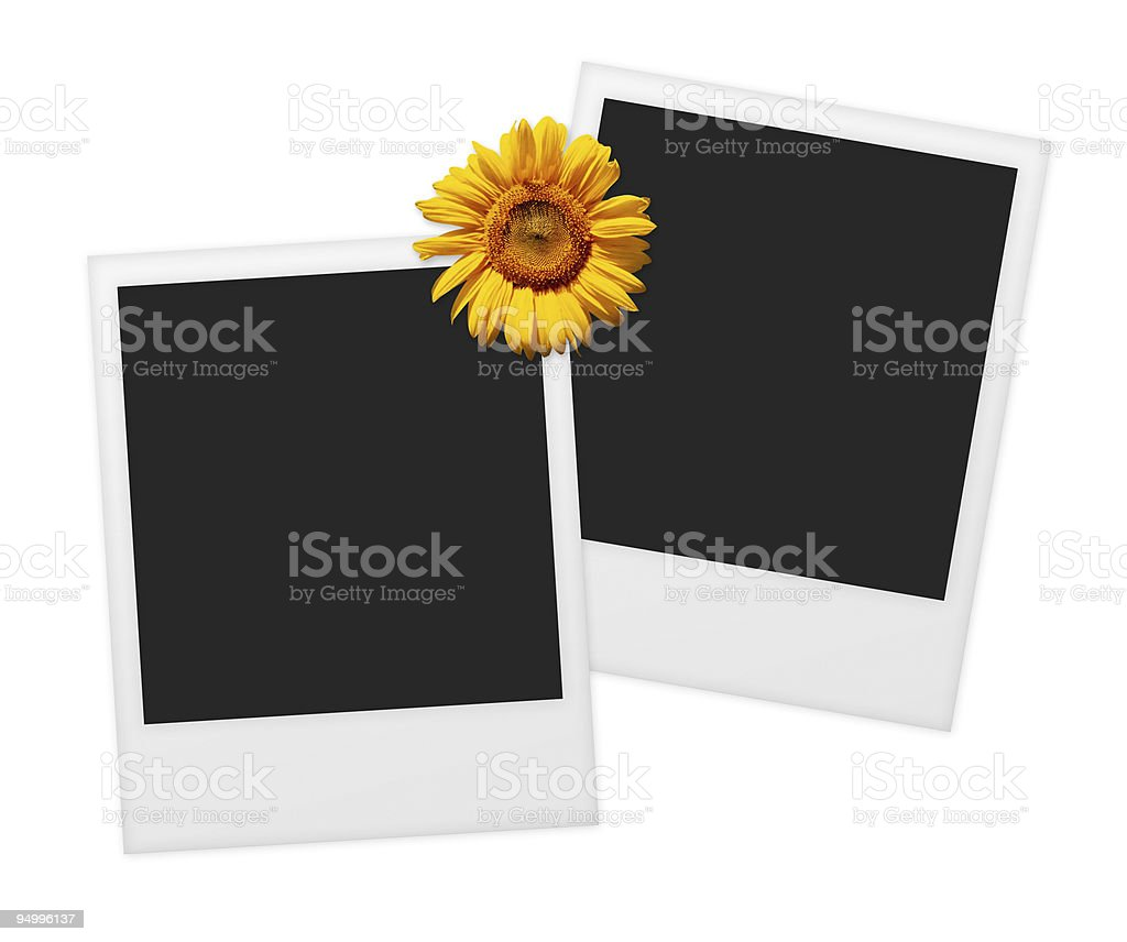 Two Blank instant prints royalty-free stock photo
