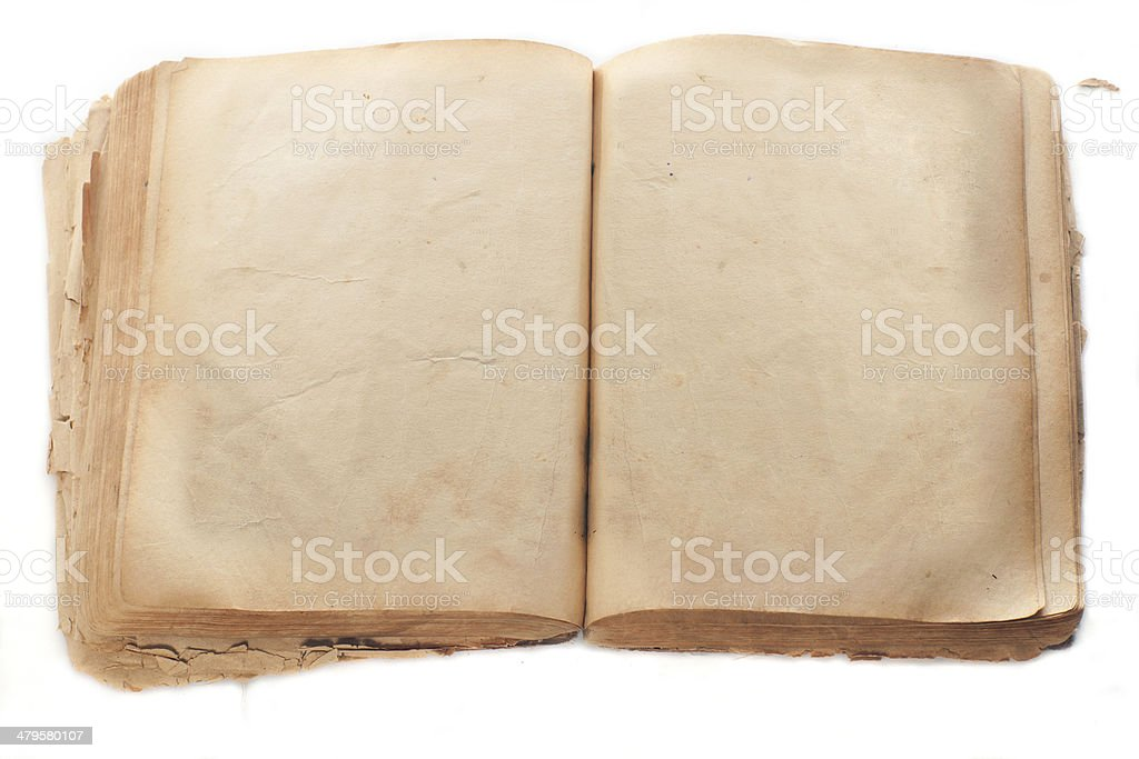 Two blank Pages in ancient Book stock photo