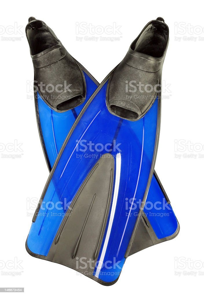 Two blue fins used for snorkeling stock photo