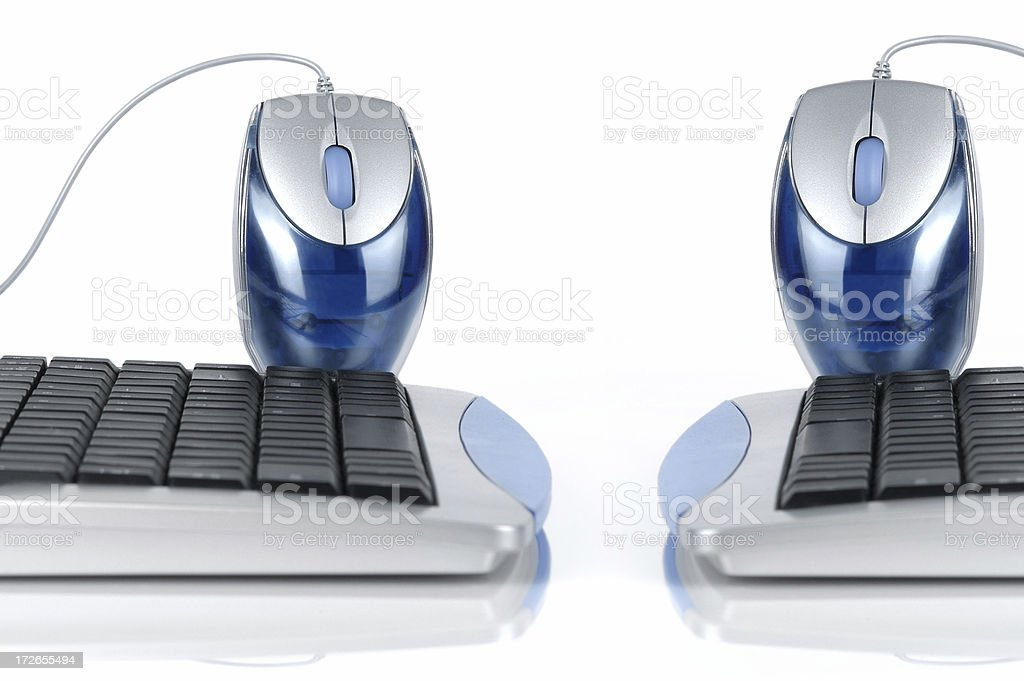 Two blue mice stock photo