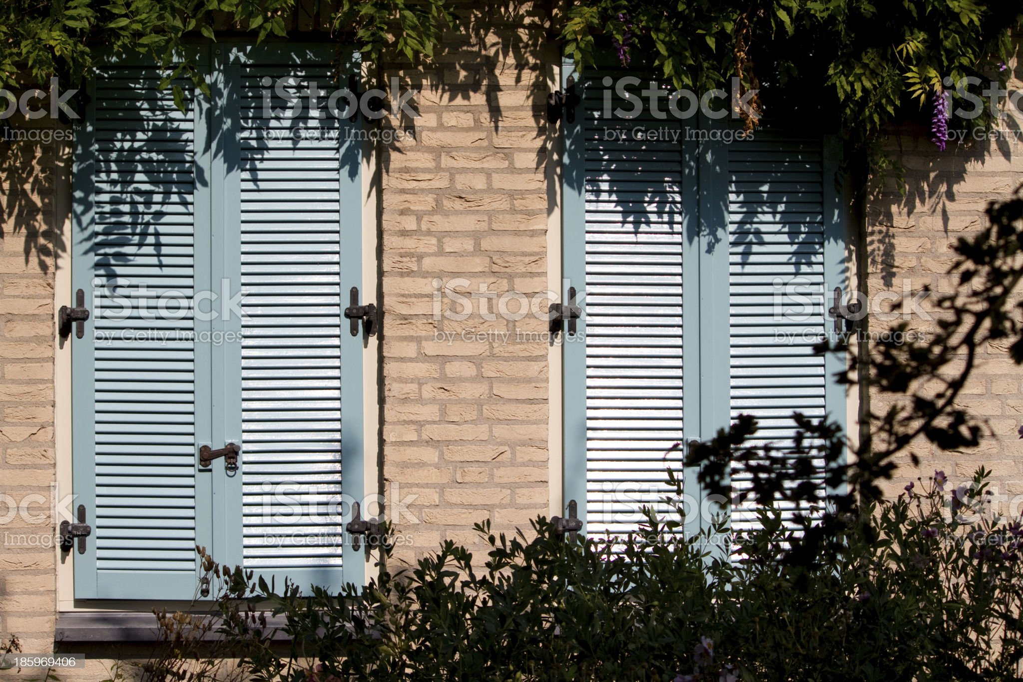 two blue wooden shutters royalty-free stock photo