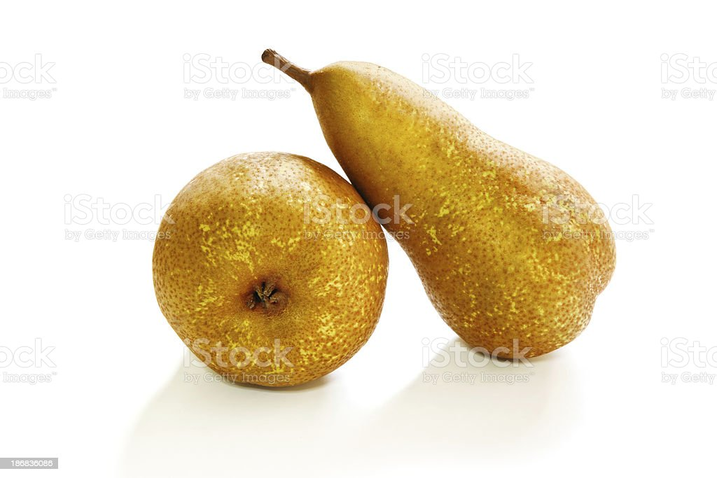 Two bosc pears stock photo