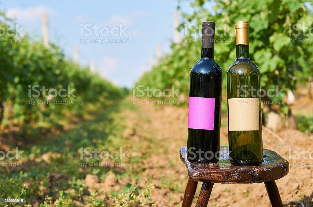 Two bottles of vine. stock photo