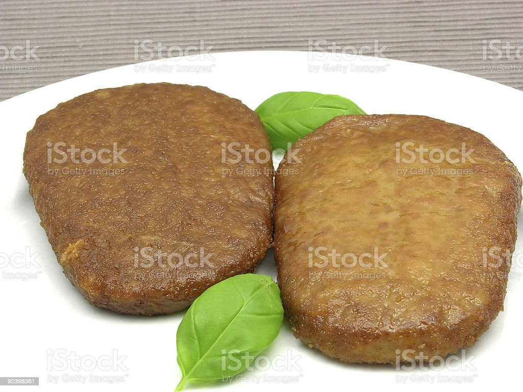 Two breaded bean curd cutlets on white plate royalty-free stock photo