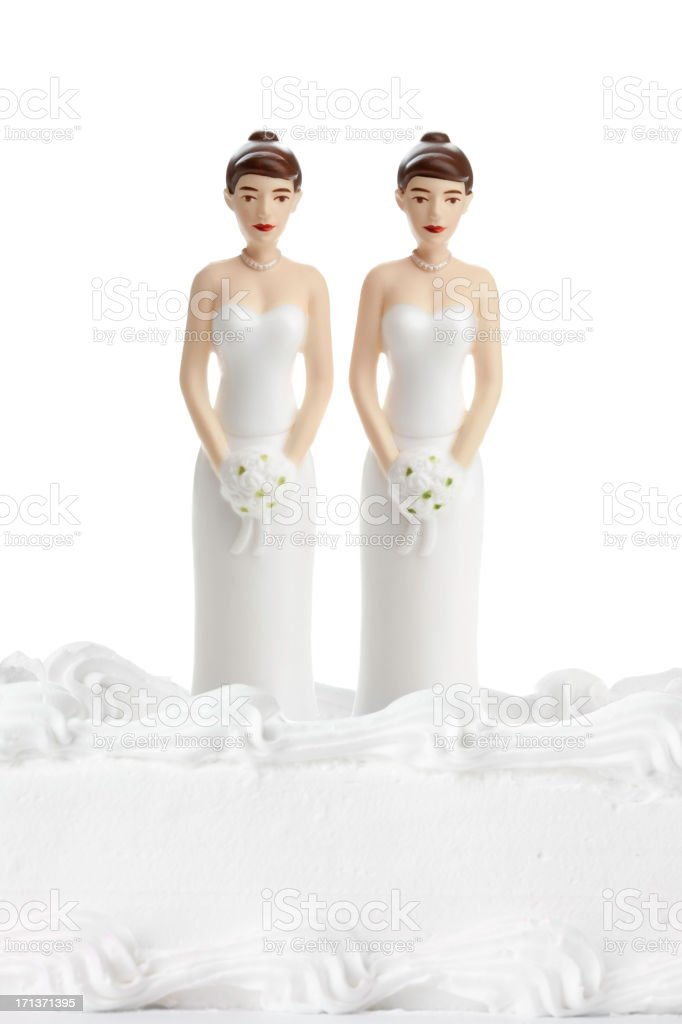 Two Brides Isolated on White stock photo