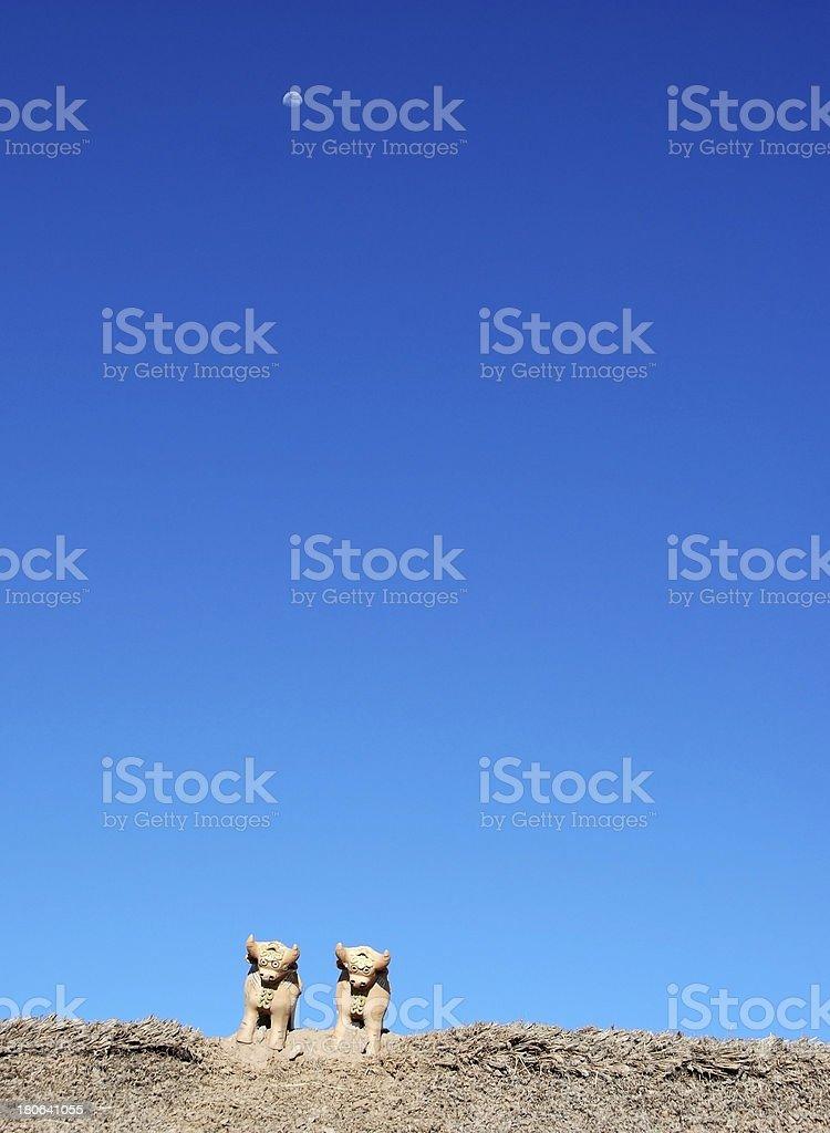 two bulls royalty-free stock photo