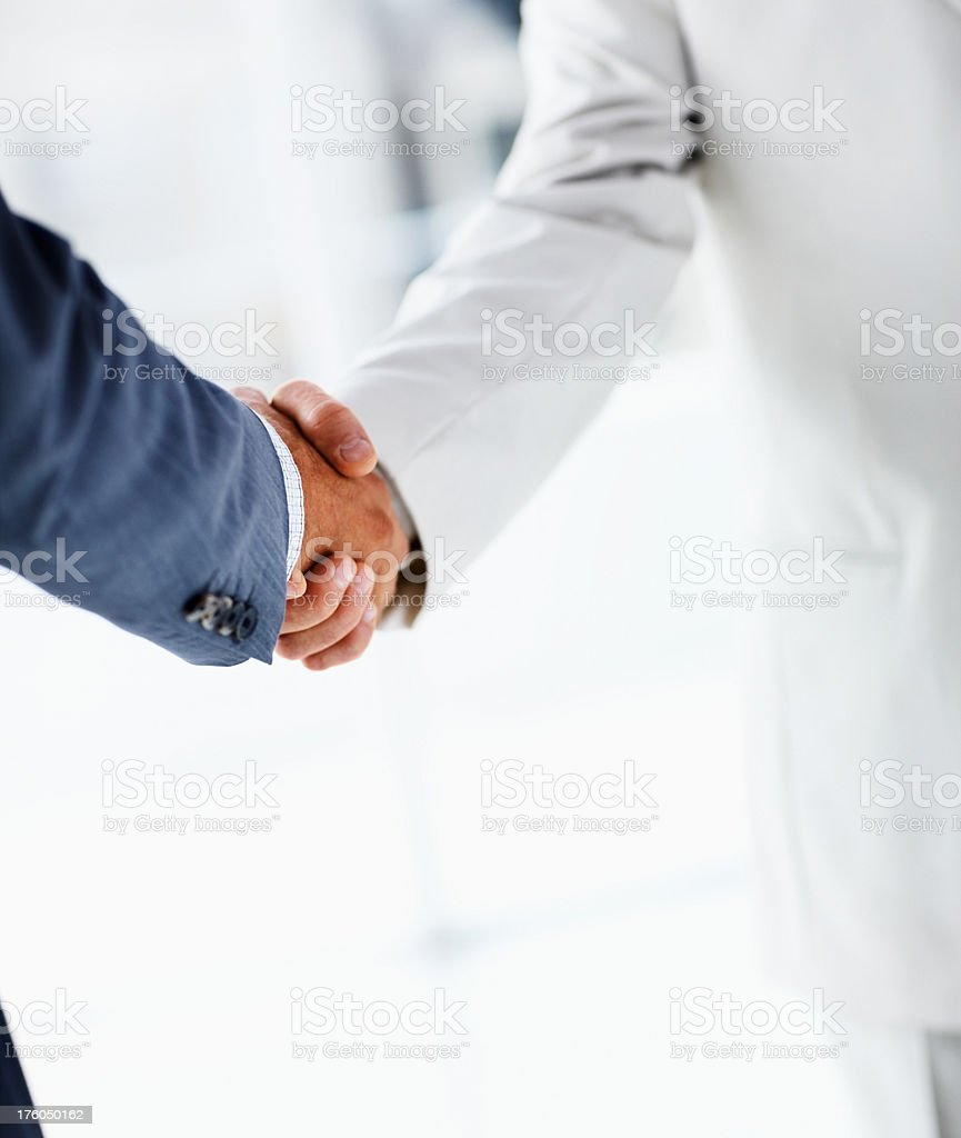 Two businesmen shaking hands royalty-free stock photo