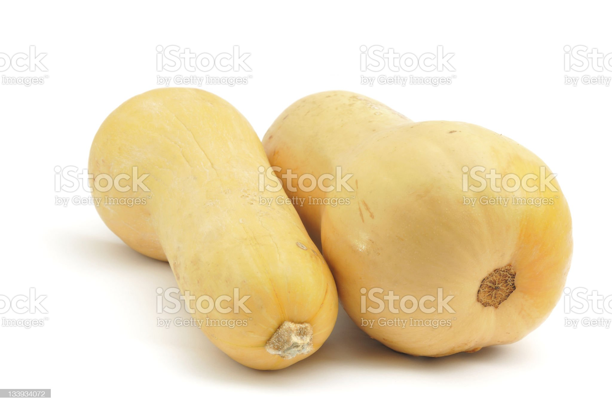 Two Butternut Squashes royalty-free stock photo