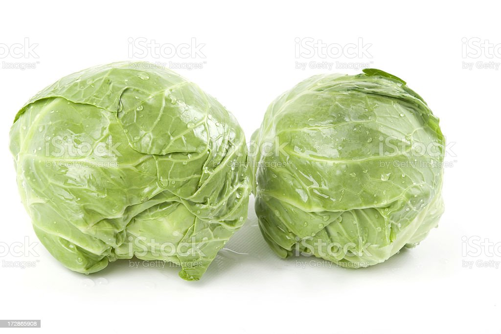 Two cabbages royalty-free stock photo