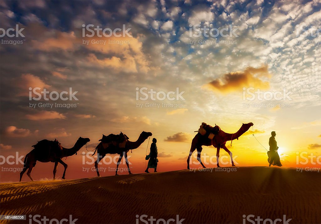 Two cameleers camel drivers with camels in dunes of Thar stock photo