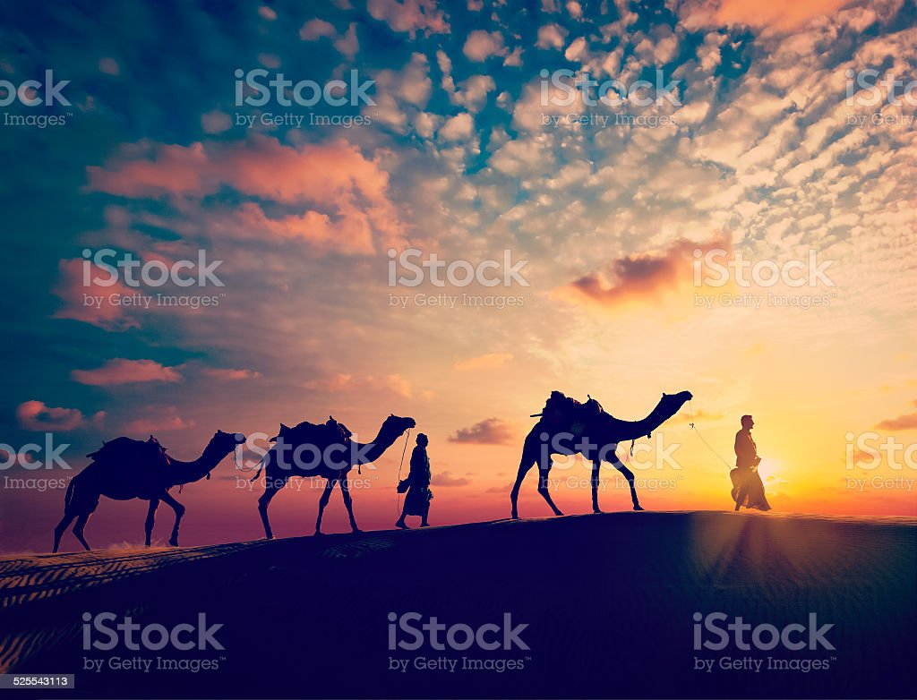 Two cameleers (camel drivers) with camels in dunes of desert stock photo