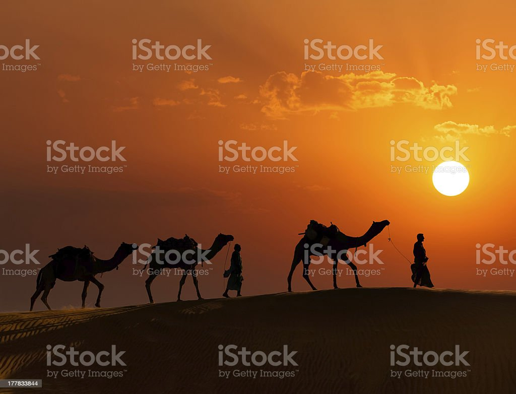 Two cameleers with camels in dunes of Thar deser stock photo