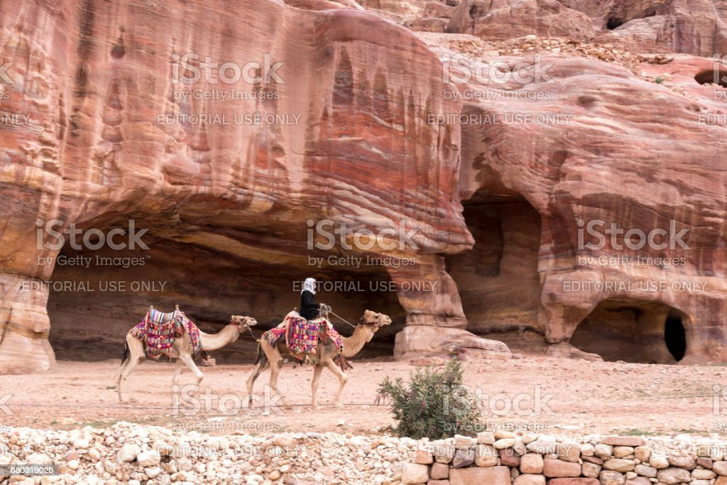Two camels in ornate and colorful saddles with bedouins rider in front of red sandstone caves stock photo