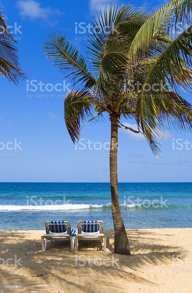 Two chairs under a palm tree on a tropical beach setting royalty-free stock photo